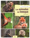 DESCUBRIENDO EL MUNDO :LOS ANIMALES DEL BOSQUE