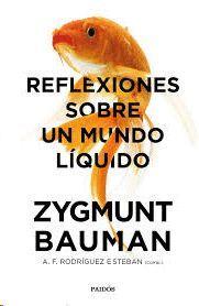 REFLEXIONES SOBRE UN MUNDO LIQUIDO
