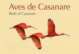 AVES DE CASANARE